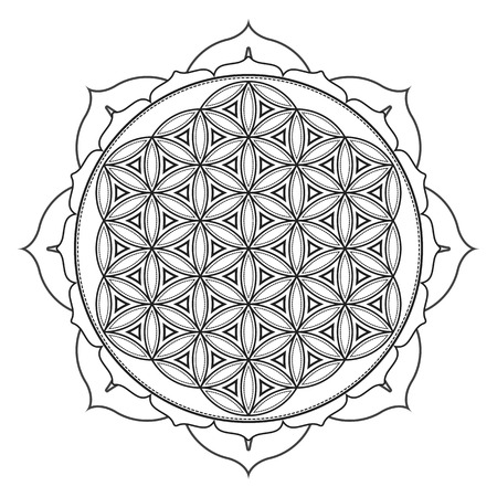 Vektor Kontur monochrome Design Mandala heilige Geometrie Illustration Blume des Lebens Lotus isoliert auf weißem Hintergrund Vektorgrafik