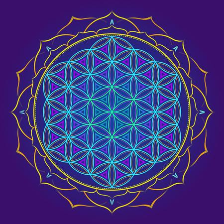 vector colored design mandala sacred geometry illustration Flower of life yantra lotus isolated dark background