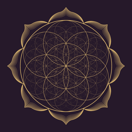dessin monochrome vecteur d'or mandala abstrait géométrie sacrée illustration Graine Fleur de vie lotus isolé fond brun foncé