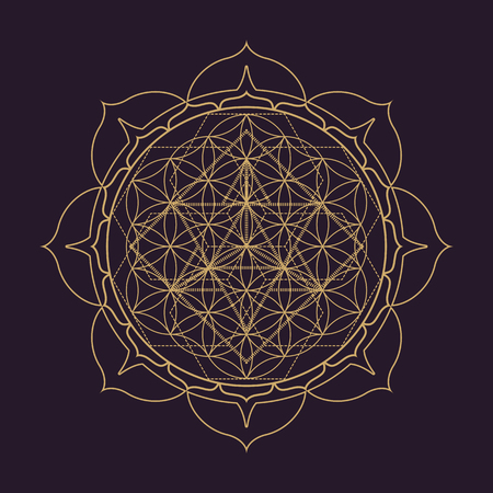 vector gold monochrome design abstract mandala sacred geometry illustration Flower of life Merkaba lotus isolated dark brown background  イラスト・ベクター素材