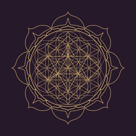 벡터 골드 단색 디자인 추상 만다라 신성한 형상 그림 생명의 꽃 Merkaba 연꽃 절연 어두운 갈색 배경 일러스트