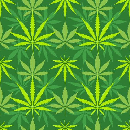 벡터 다양 한 색상 대마초 타 액 indica 마리화나 잎 실루엣 장식 원활한 패턴 진한 녹색 배경