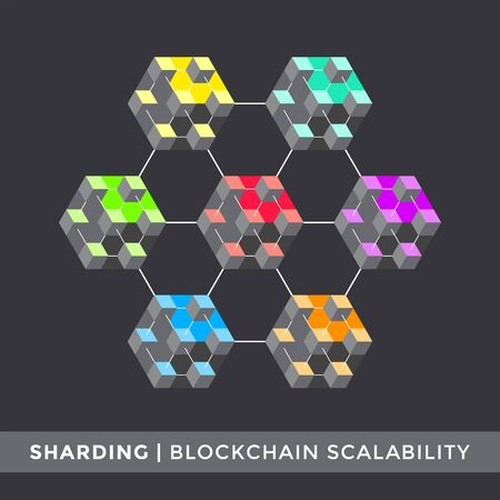 vector blockchain scalability sharding algorithm principal scheme infographic cryptocurrency blockchain network technology digital business concept illustration