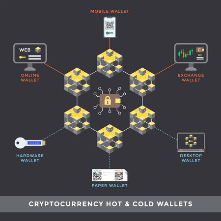 vector hot and cold cryptocurrency wallets principal scheme online mobile exchange hardware paper desktop types infographic blockchain technology digital business concept illustration   イラスト・ベクター素材