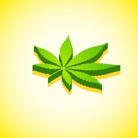 vector isometric design green color cannabis leaf marijuana design icon with shade isolated yellow background