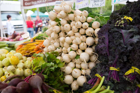 Ping Pong radish with pure white round roots at the farmers market Stock Photo