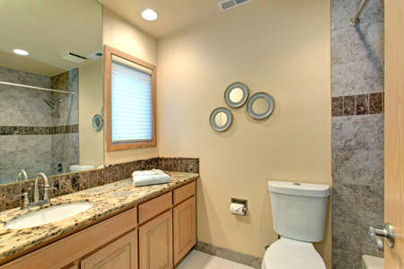 Green Granite Showers : Neutral bathroom design with green marble tile shower surround