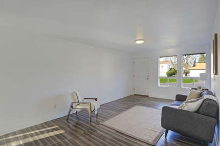 White entrance room with comfortable tufted sofa and wooden armchair and beige sisal rug on the floor.  Stock Photo