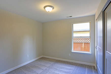 Empty Room Interior With Beige Walls, Built In Closet And Wall To Wall  Carpet.