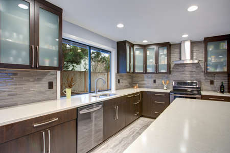Updated contemporary kitchen room interior with white counters and dark wood cabinets fitted with luxury stainless steel appliances.