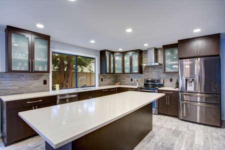 Interior de la sala de cocina contemporánea actualizada con mostradores blancos y gabinetes de madera oscura equipados con electrodomésticos de lujo de acero inoxidable.