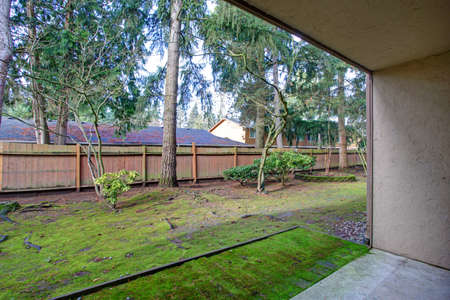 View of the backyard area with wooden fence and trees.  Stock Photo
