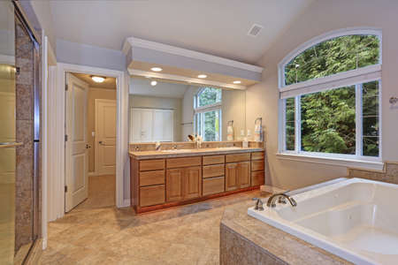 Stunning master bathroom with double vanity cabinet, large arched window, vaulted ceiling and luxury spa tub.