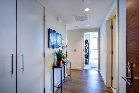 Luxury apartment interior showcases white foyer with pure white walls, black console table atop hardwood floor.  版權商用圖片