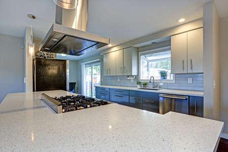 Stilvoll aktualisierte Küche mit Quarzarbeitsplatten und Geräten aus Edelstahl.