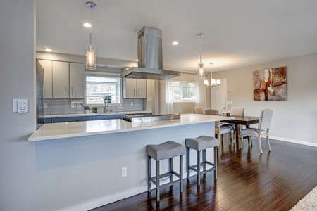 Open concept home interior features kitchen and dining space.