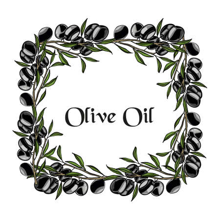 Composition of black olives. For labels for olive oil. Just add your text and logo.