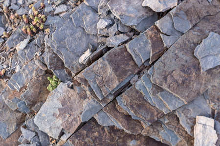 Textured background of pieces of slate stone with gray and brown colors