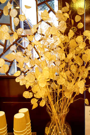 lattice window: golden flowers in vase by window