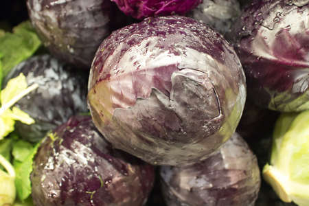 red cabbage at the market Stock Photo - 17082690