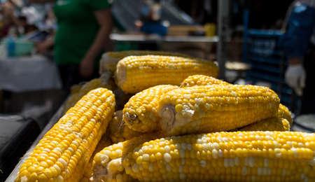 some fresh corn on the cob