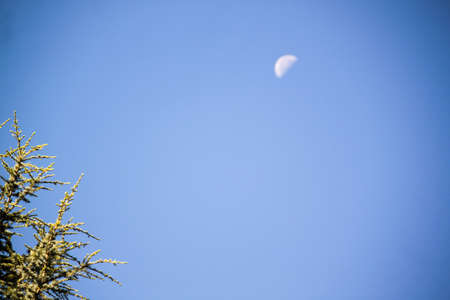a morning moon against pale blue sky