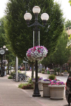 lamp post: sidewalk with hanging flowers on lamp post Stock Photo