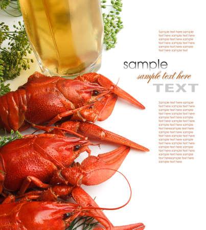 lobster: 딜 삶은 왕새우 흰색 배경에 고립