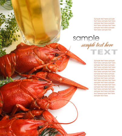 Boiled crayfish with dill isolated on a white background