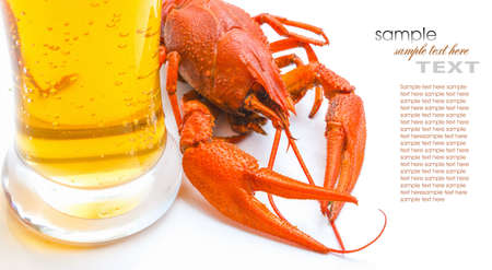 riverine: the red lobster with a glass of beer on white background Stock Photo
