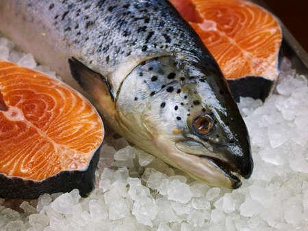 salmon fish: Fresh red fish on ice