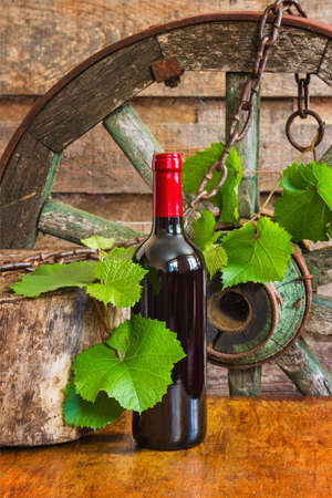 A bottle of wine on the background of the vine in a vintage entourage Stock Photo - 14600315