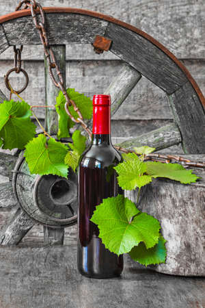 A bottle of wine on the background of the vine in a vintage entourage
