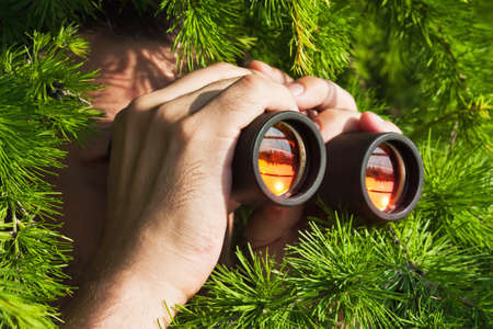 distant work: watching from the bushes with binoculars Stock Photo