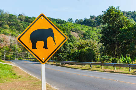 Road sign caution elephants on the track in Thailand photo