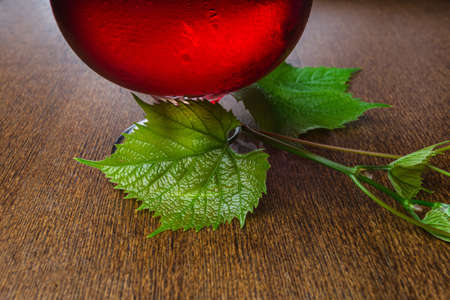 glass of wine with a vine on a table photo
