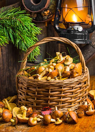 Still life of yellow boletus mushrooms in a basket photo