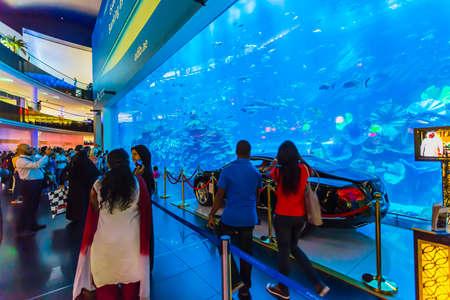 DUBAI, UAE - NOV 9: Aquarium in Dubai Mall - worlds largest shopping mall , Downtown Burj Dubai November 9, 2013 in Dubai, United Arab Emirates