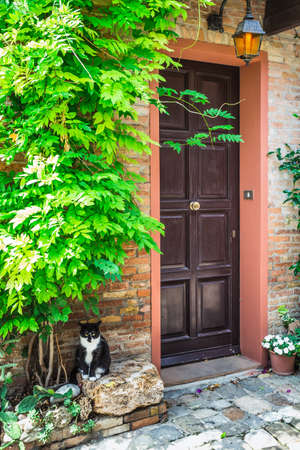 Entrance to the old Italian house and the cat on the doorstep photo