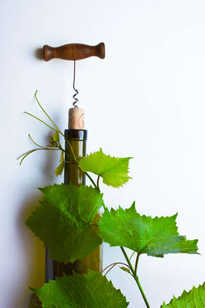corkscrew and cork from a bottle of wine
