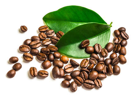 granos de cafe: Los granos de caf� y hojas para bebida