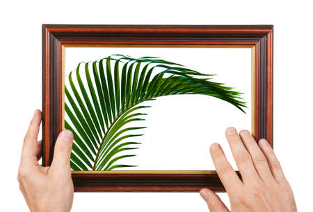 framed picture: Photo Frame in the hands isolated on white background