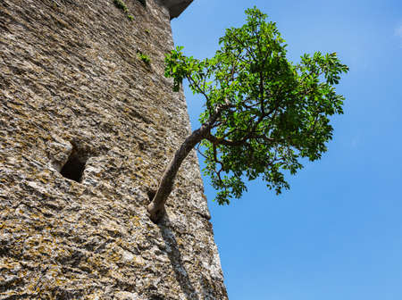woll: The woll of Guaita fortress is the oldest and the most famous tower on San Marino. Stock Photo