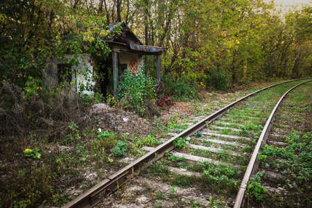 shack: Old abandoned shack stationmaster in the forest