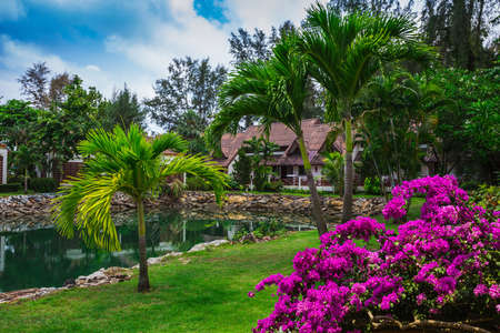 tropical garden: KOH CHANG, THAILAND - 31 MART, 2015: Klong Prao Resort. Cottages on the Bay in a tropical garden Editorial