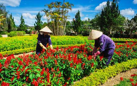 lat: DA LAT CITY  VIETNAM - NOEMBER 26 2014 : Da Lat flower garden main gate located at Ho Xuan Huong lake at the downtown of Dat Lat City, Lam Dong province, Vietnam Editorial