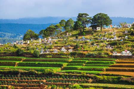 달랏, 베트남 -11 월 26 일 : 사람들이 무덤을 방문하고, 1 년에 죽은 사람을 기념하기 위해 향을 피우십시오, 이것은 베트남의 전통 문화와 맞춤형 동양,  에디토리얼