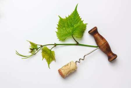 uncork: corkscrew and cork from a bottle of wine