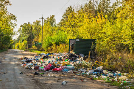 landfill: Garbage in landfill near forest - environment pollution.