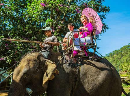 dalat: Vietnam, 27 NOV 2014; Riding on elephants. The farm of elephants not far from Dalat.